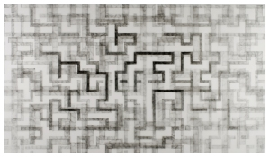Graphite on Mylar, 25x40